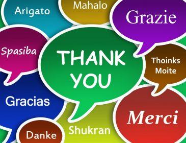Как эффективнее всего учить иностранный язык? Полиглоты поделились секретом, вы будете шокированы!