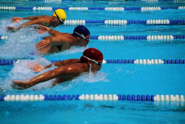 В Ивано-Франковске стартовал чемпионат Украины по плаванию на открытой воде