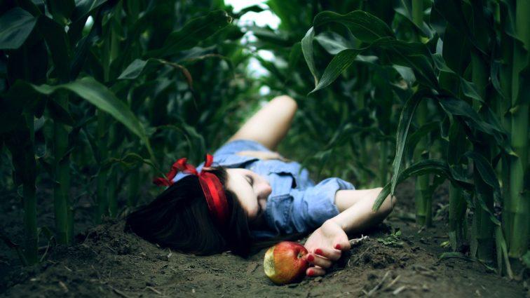 Невероятный фокус с яблоками британской учительницы подорвал Фейсбук