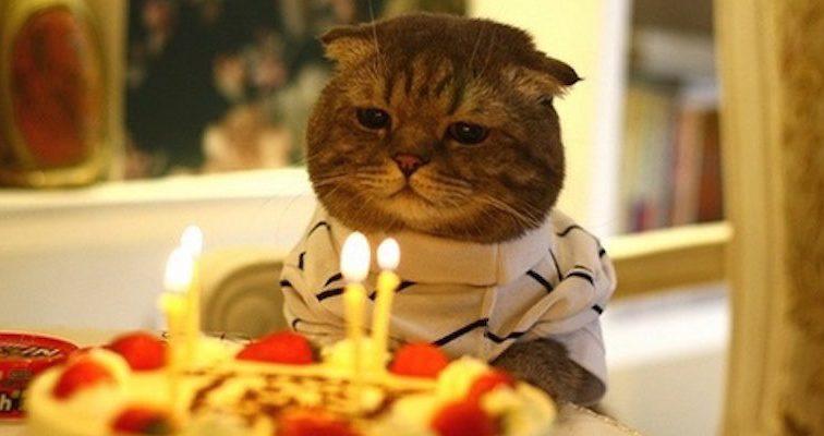 Если вы родились в этот день, у вас — самый счастливый День рождения в мире!