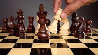 Арещенко второй раз подряд выиграл шахматный турнир во Франции