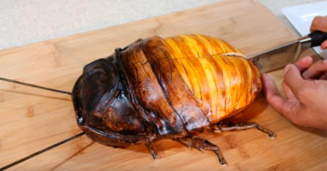 Она надрезала ножом этого огромного таракана… Вот что оказалось внутри!