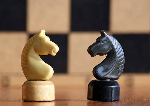 На шахматную Олимпиаду поедут молодые