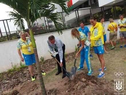 Украинские олимпийцы высадили дерево в Рио-де-Жанейро