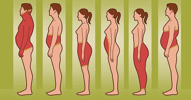 Что можно сказать о человеке по месту нахождения лишнего веса