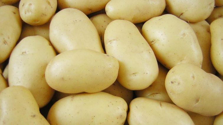 Как почистить килограмм картошки за одну минуту? ( видео)