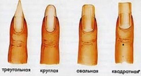 Характер человека можно определить по форме ногтей