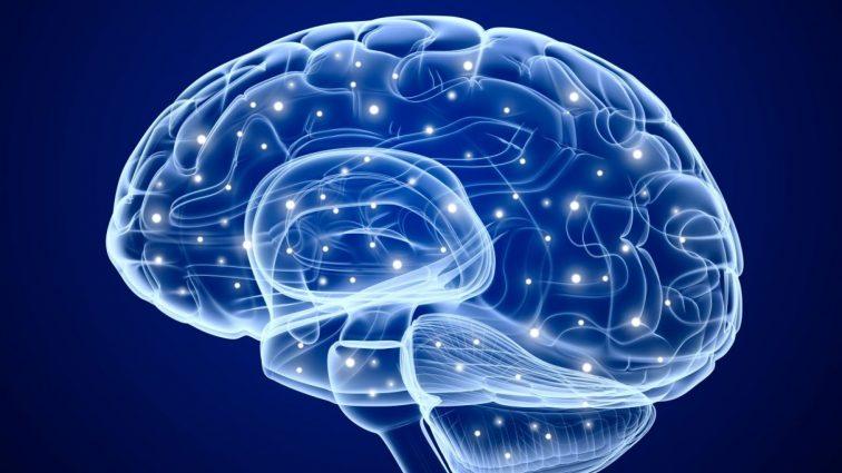 Ничего себе: ученые выяснили как можно перенести любую информацию с одного тела в другое