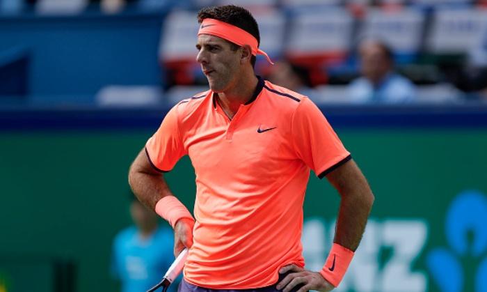Дель Потро: подумывал об уходе из тенниса в пользу архитектуры
