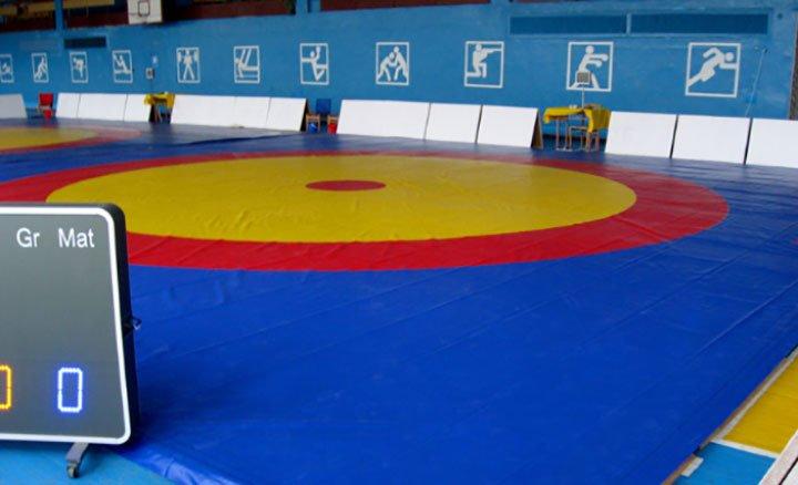 Волынянки завоевали «серебро» и «бронзу» на международном турнире по вольной борьбе