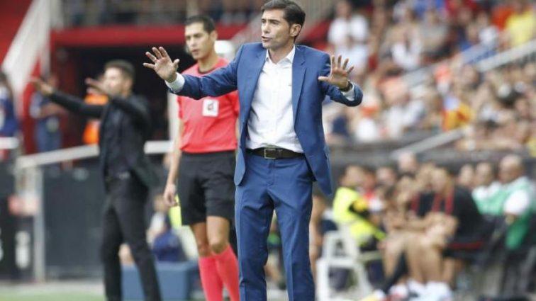 Тренера испанского клуба госпитализировали после столкновения с кабаном