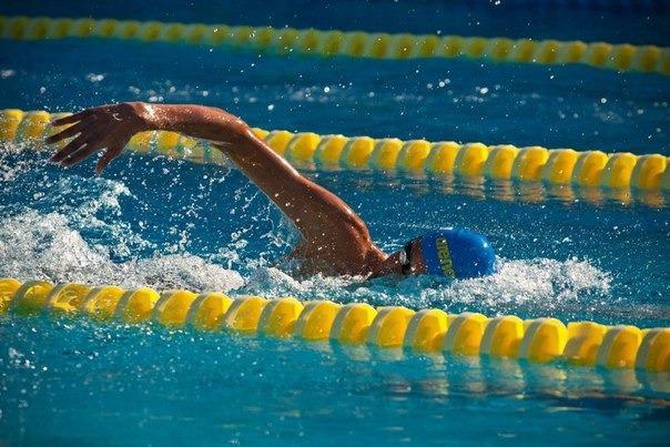 Украинские пловцы завоевали медали в Милане