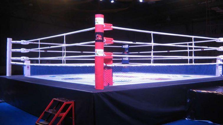 «Вот так поворот!»: Известного боксера отправил в нокаут дебютант