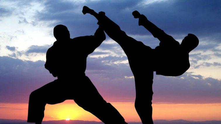 Иванофранковец Павел Панфилов стал чемпионом мира по каратэ