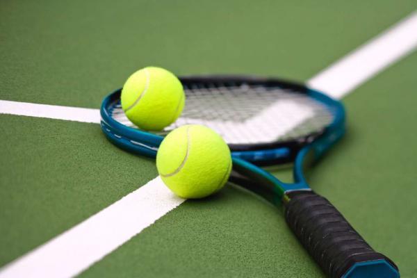 Известная теннисистка в 2019 году выйдет замуж за спортсмена?